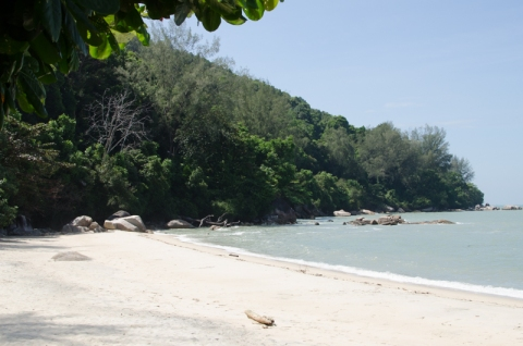 Monkey Beach, Penang