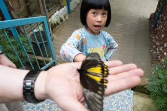Our tour guide & the butterflies